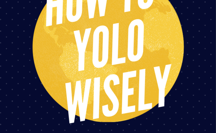 How To YOLO Wisely Book Cover